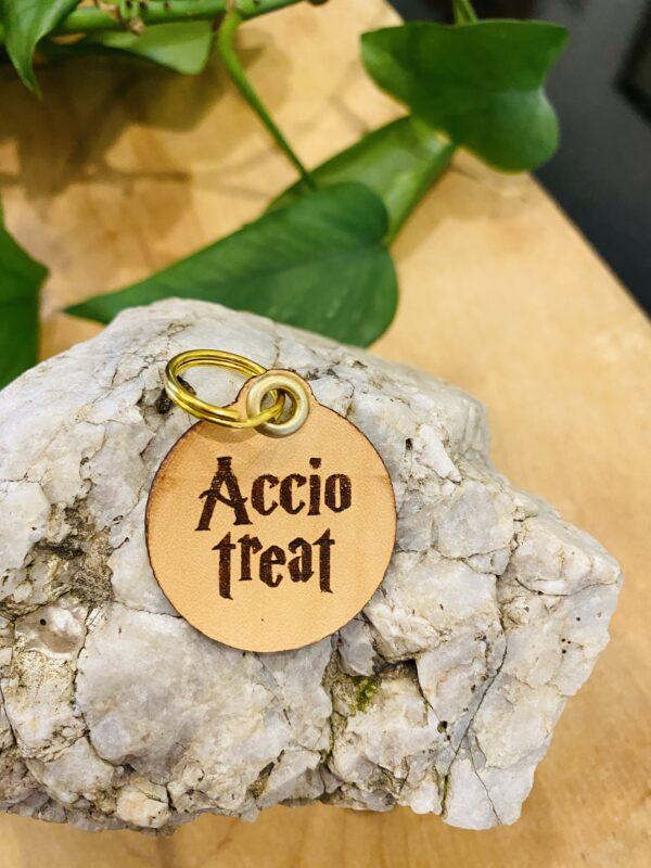 """Accio Treat"" Genuine Leather Pet Collar Tag"