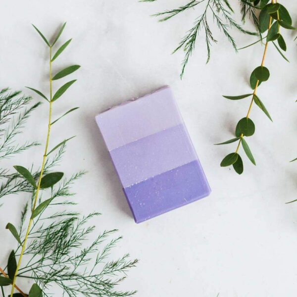 Lavender Fields Body Bar Soap